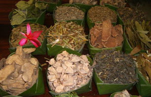 Ingredients in Thai herbal compress